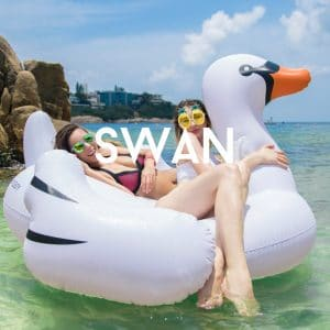 Flotay Swan
