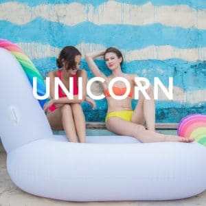 Floaty Unicorn