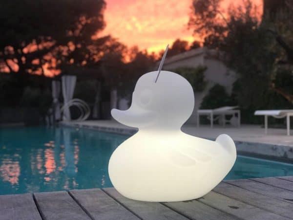Duck duck xl wit